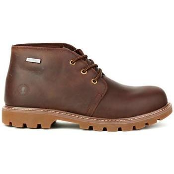 05515d4fd27 Coronel tapioca botines c453-8 marron para hombre